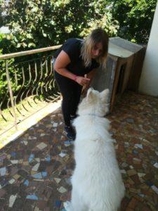 comportementaliste-canin-parole-animale